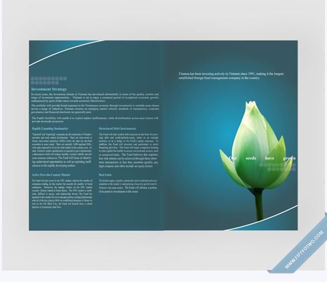 TVF - Brochure Design